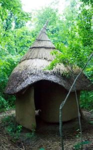 Spiral Chamber ~ Thatched Cap. photo by A