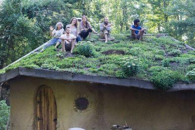Interns on Hobbit Sauna Living Roof 2016