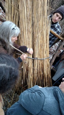 Petar looks on as Deanne shows us how the pin is used to hold the loose red in place and the wooden needle will be used to tie the sway (the gray stick across the reed) down to the purlin under the reed bundles.